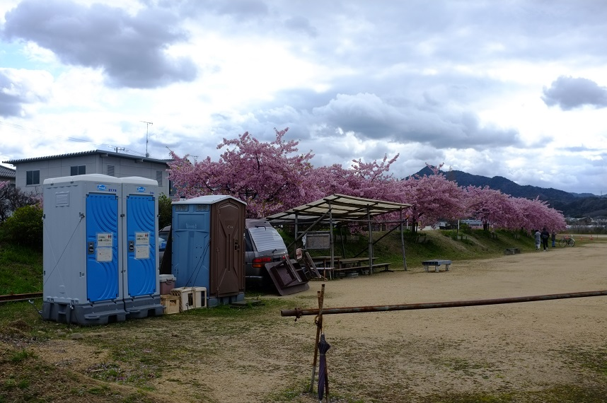 お花見スポットにある公衆トイレ