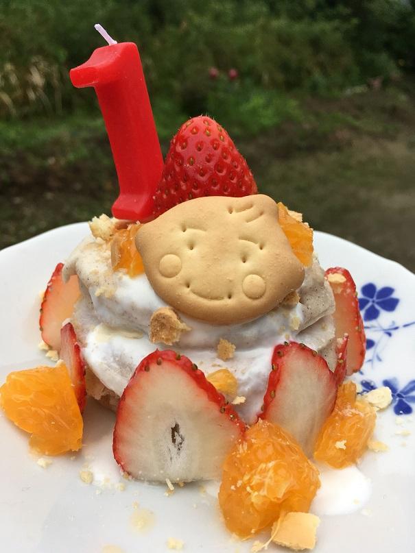 完成したケーキ、数字の1のローソクを立てて、クッキーや果物で装飾している